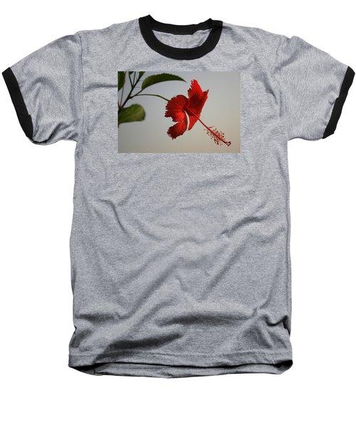 Skc 0450 Vibrant Hibiscus Baseball T-Shirt