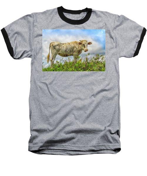 Skinny Cow Baseball T-Shirt