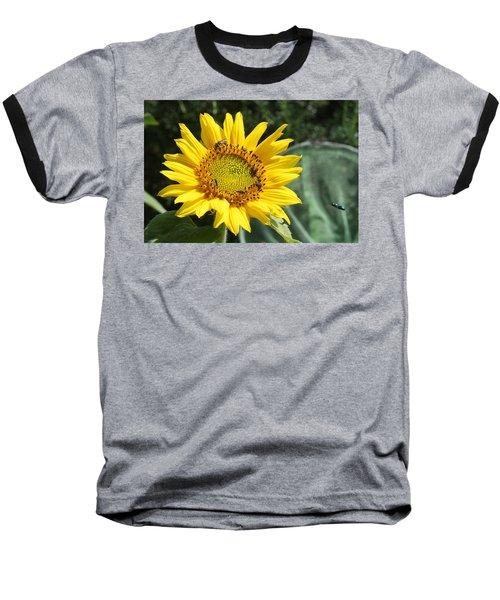 Skipping Spring Baseball T-Shirt