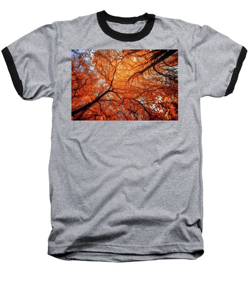 Sky Roots In Forest Red Baseball T-Shirt by John Williams