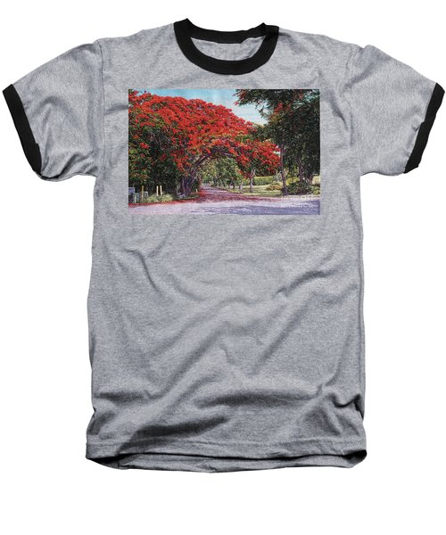 Skyline Drive Baseball T-Shirt