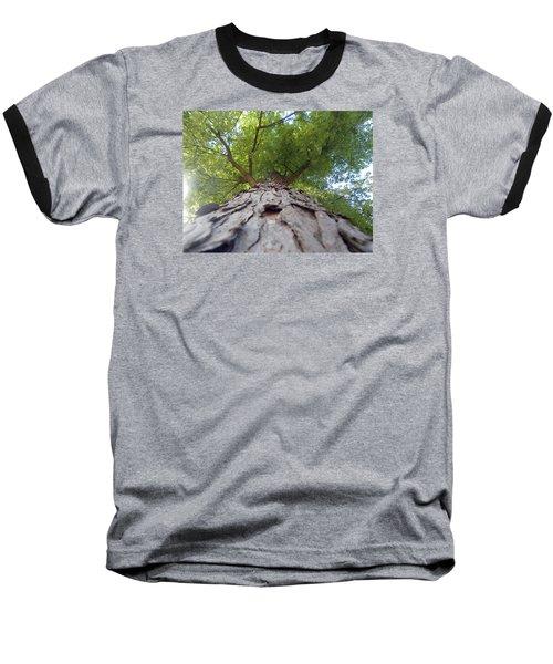 Skyward Baseball T-Shirt by Teresa Schomig