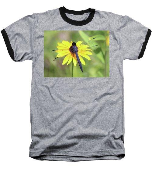 Slaty Skimmer  Baseball T-Shirt