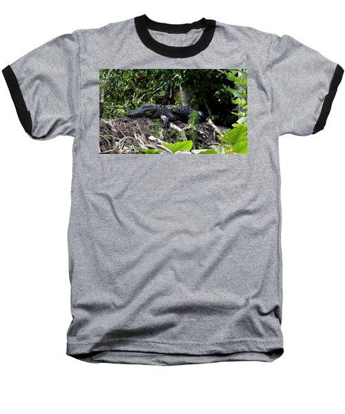 Sleeping Alligator Baseball T-Shirt