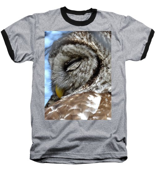 Sleeping Barred Owl Baseball T-Shirt by Rebecca Overton