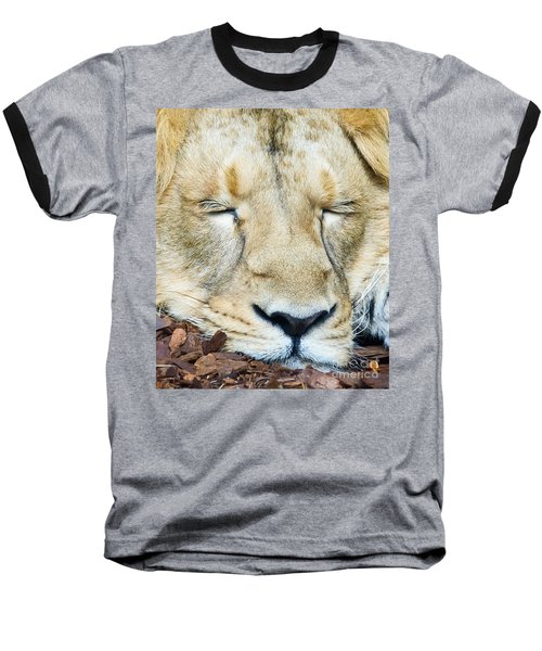 Baseball T-Shirt featuring the photograph Sleeping Lion by Colin Rayner