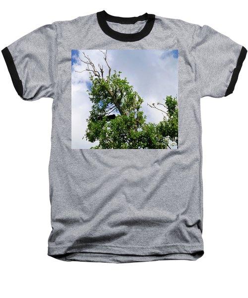 Baseball T-Shirt featuring the photograph Sleeping Monkey 2 by Francesca Mackenney