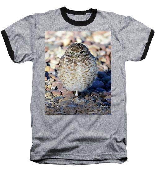Sleepy Burrowing Owl Baseball T-Shirt