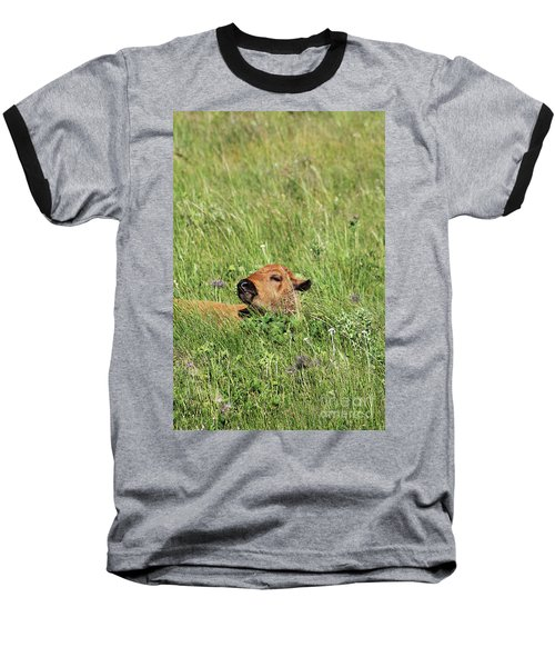 Baseball T-Shirt featuring the photograph Sleepy Calf by Alyce Taylor