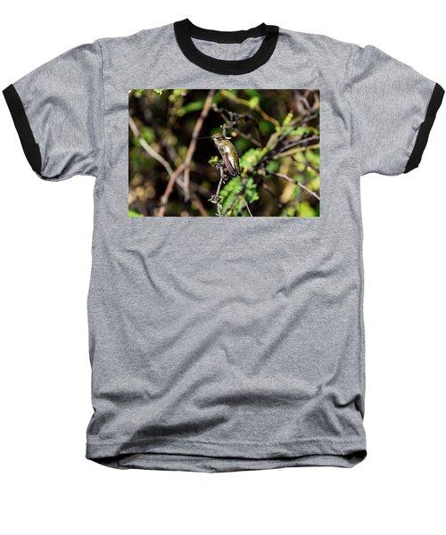 Sleepy Hummingbird Baseball T-Shirt