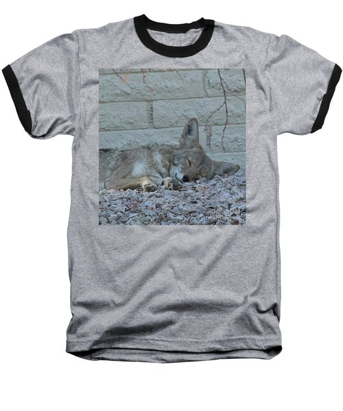 Sleepy Li'l Coyote Baseball T-Shirt by Anne Rodkin