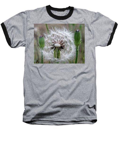 Slight Breeze Baseball T-Shirt