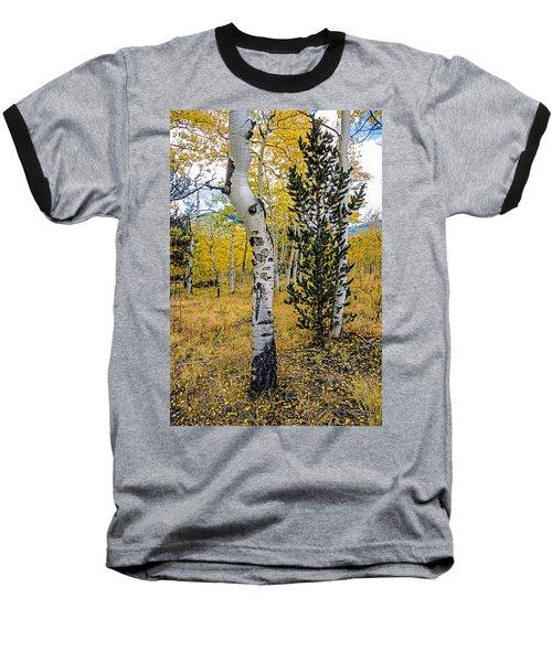 Slightly Crooked Aspen Tree In Fall Colors, Colorado Baseball T-Shirt by John Brink