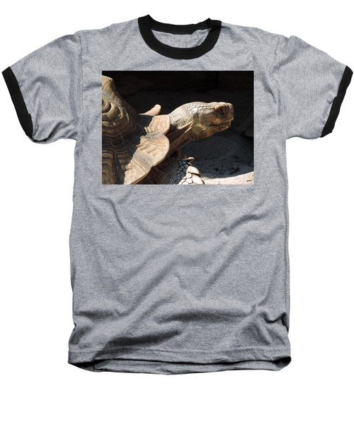 Baseball T-Shirt featuring the photograph Slow But Sure by Teresa Schomig