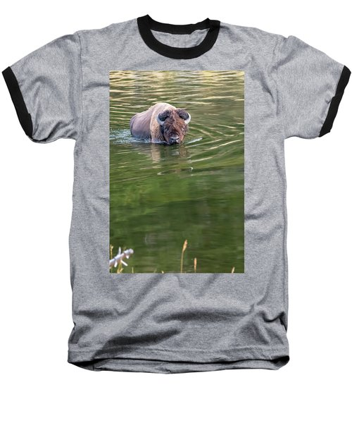 Slow Wadeing  Baseball T-Shirt