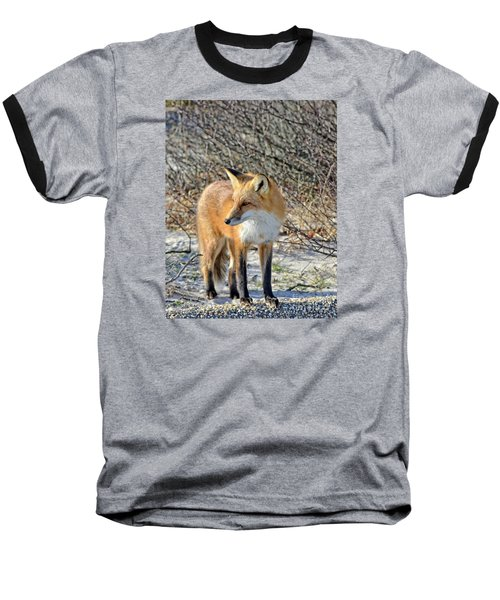 Baseball T-Shirt featuring the photograph Sly Little Fox by Sami Martin