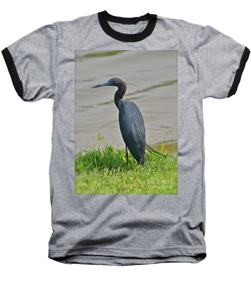 Baseball T-Shirt featuring the photograph Small Blue Heron by Carol  Bradley