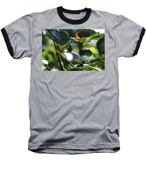 Small Nature's Beauty Baseball T-Shirt by Christopher L Thomley