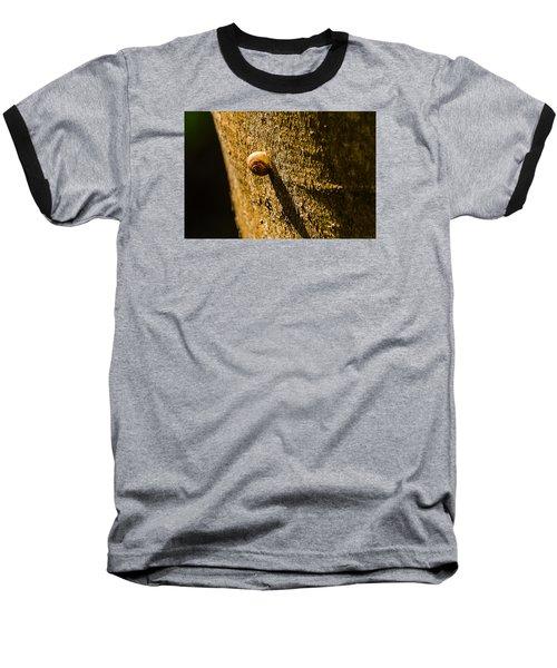 Small Snail On The Tree Baseball T-Shirt