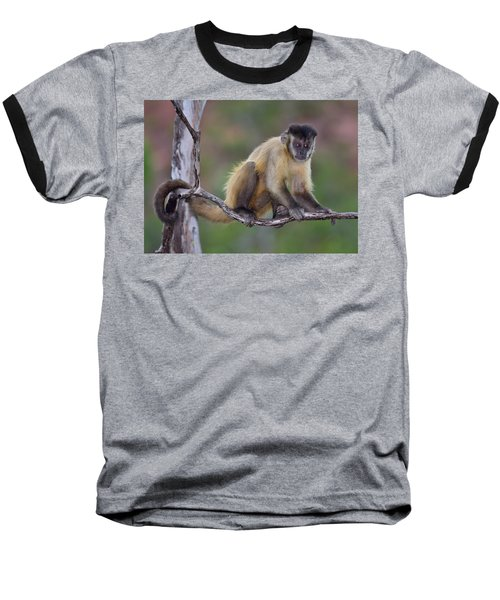 Baseball T-Shirt featuring the photograph Smarty Pants by Tony Beck