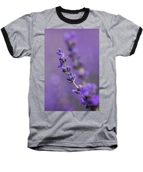 Smell The Lavender Baseball T-Shirt