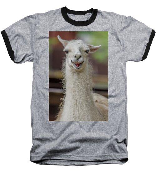Smiling Alpaca Baseball T-Shirt