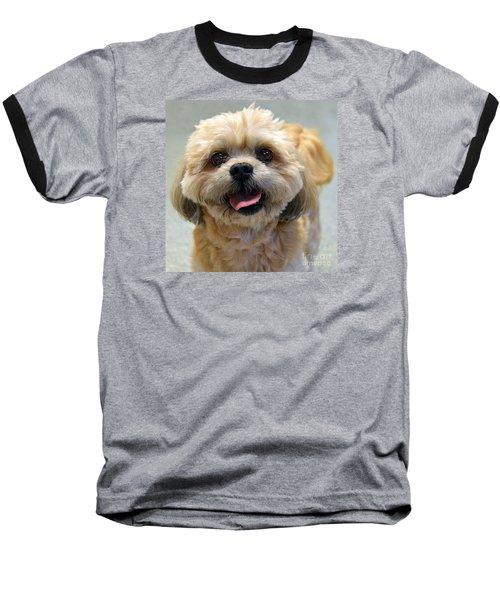 Smiling Shih Tzu Dog Baseball T-Shirt by Catherine Sherman