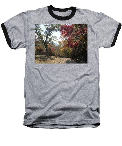 Smokies 12 Baseball T-Shirt by Val Oconnor
