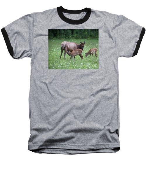 Smoky Mountain National Park Elk Cow Nursing Calf Baseball T-Shirt