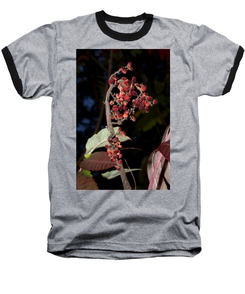 Smooth Sumac Flower Baseball T-Shirt