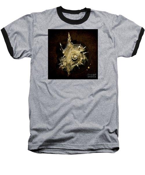 Sea Shell Baseball T-Shirt by Alexa Szlavics