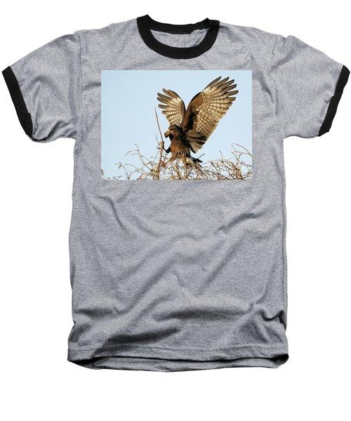 Snail Kite Coming In Baseball T-Shirt