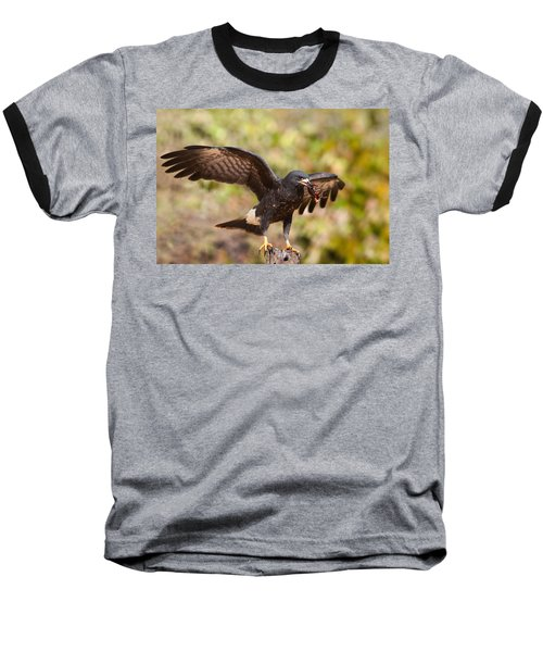 Snail Kite With Crab In Pantanal Baseball T-Shirt