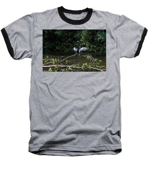 Snake Bird Perching Baseball T-Shirt