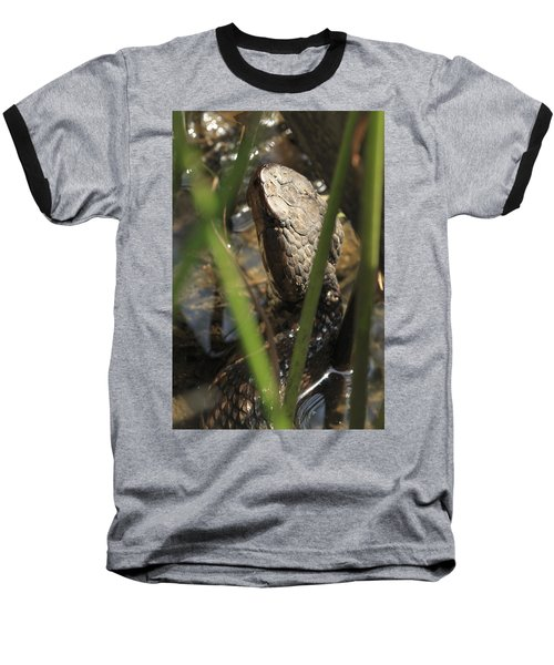 Snake In The Water Baseball T-Shirt