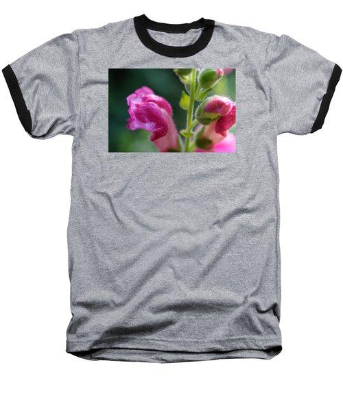 Snapdragon Hairs Baseball T-Shirt by Adria Trail