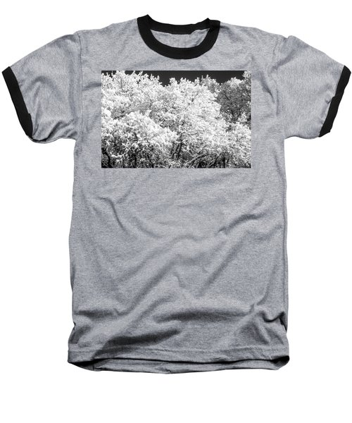 Snow And Frost On Trees In Winter Baseball T-Shirt by John Brink