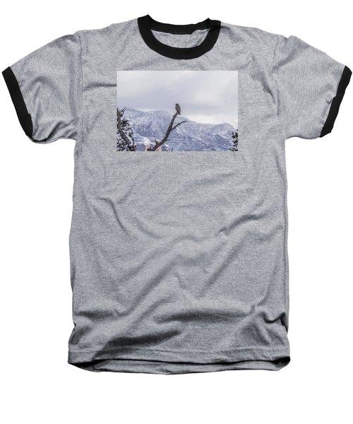 Snow Bird Baseball T-Shirt by Laura Pratt