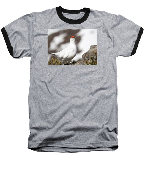 Snow Bird Baseball T-Shirt