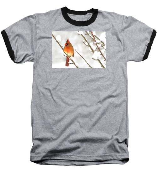 Snow Cardinal Baseball T-Shirt