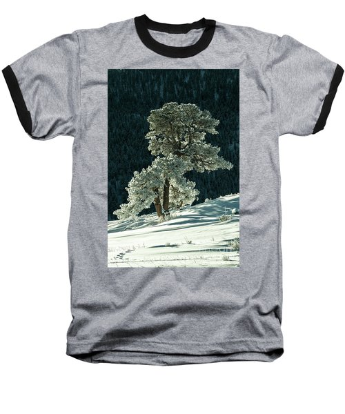 Snow Covered Tree - 9182 Baseball T-Shirt