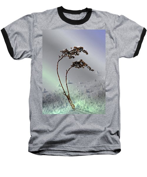Snow Covered Weeds Baseball T-Shirt by Judy Johnson