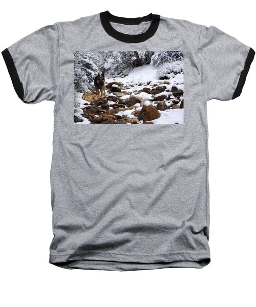 Snow Cup Baseball T-Shirt
