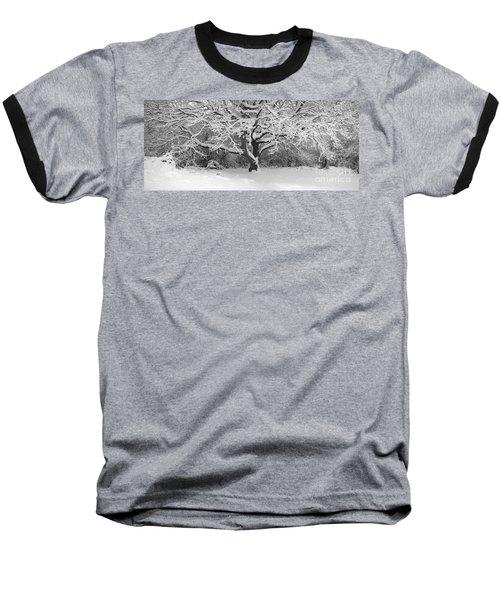 Snow Dusted Tree Baseball T-Shirt