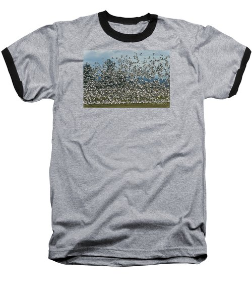 Snow Geese Convention Baseball T-Shirt