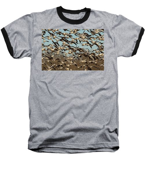 Snow Geese Baseball T-Shirt