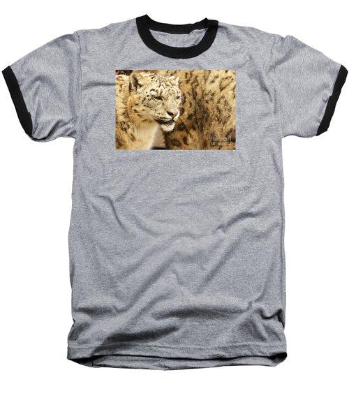 Snow Leopard  Baseball T-Shirt by Gary Bridger
