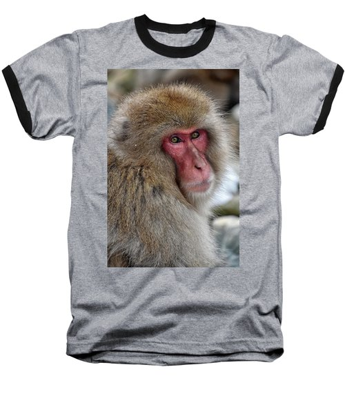 Snow Monkey Baseball T-Shirt