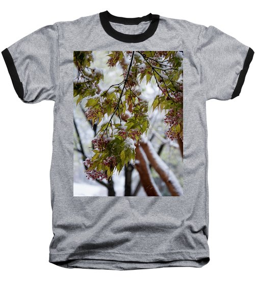 Baseball T-Shirt featuring the photograph snow on the Cherry blossoms by Chris Flees