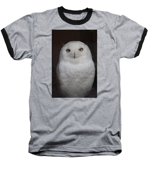 Baseball T-Shirt featuring the photograph Snow Owl by Debra     Vatalaro